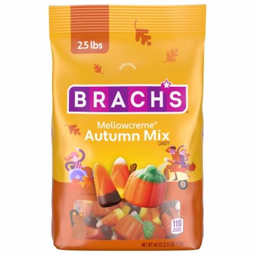 Brach's® Autumn Mix Candy Corn Perspective: front