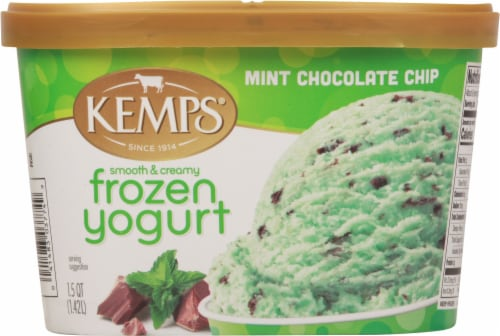 Kemps Smooth & Creamy Mint Chocolate Chip Frozen Yogurt Perspective: front