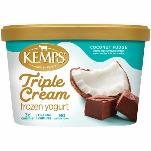 Kemps Triple Cream Coconut Fudge Frozen Yogurt Perspective: front