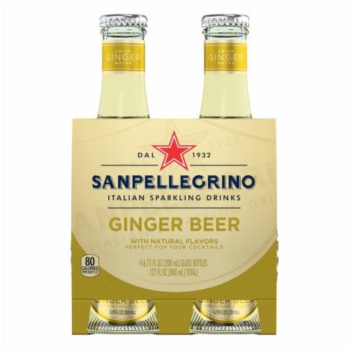 S. Pellegrino Ginger Beer Perspective: front