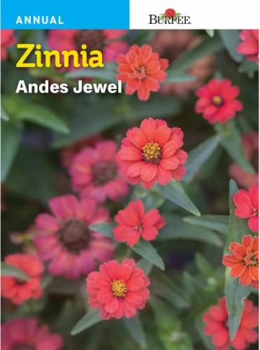 Burpee Zinnia Andes Jewel Seeds Perspective: front