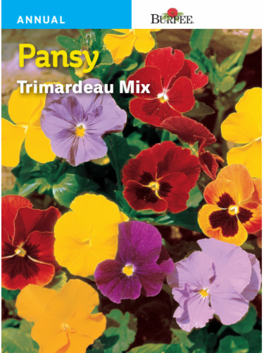 Burpee Pansy Trimardeau Mix Seeds Perspective: front