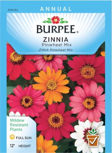 Burpee Zinnia Pinwheel Seed Mix Perspective: front