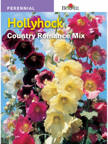 Burpee Hollyhock Country Romance Mix Seeds Perspective: front