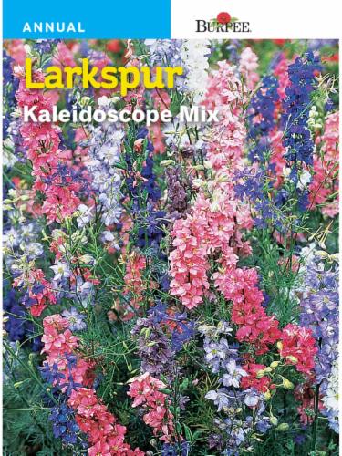 Burpee Larkspur Kaleidoscope Mix Seeds Perspective: front