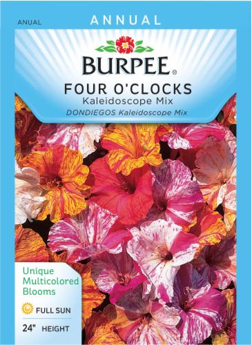 Burpee Four O'clock Kaleidoscope Mix Seeds Perspective: front