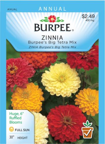 Burpee Zinnia Big Tetra Mix Seeds Perspective: front