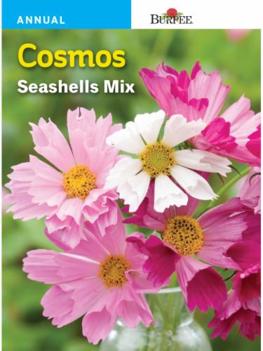 Burpee Cosmos Seashells Mix Seeds Perspective: front