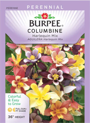 Burpee Columbine Harlequin Mixed Color Seeds - Multi-Color Perspective: front
