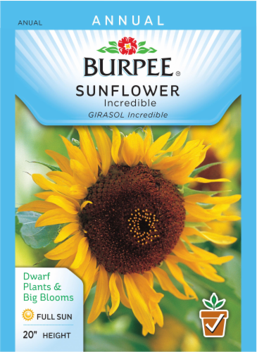 Burpee Incredible Sunflower Seeds Perspective: front