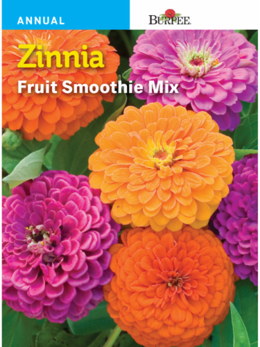 Burpee Zinnia Fruit Smoothie Seeds Mix Perspective: front