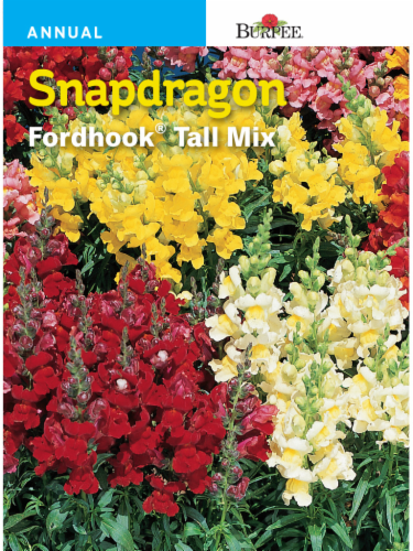 Burpee Snapdragon Fordhook Tall Mix Seeds Perspective: front