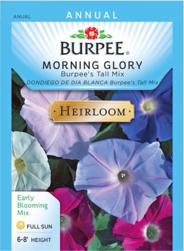 Burpee Tall Mix Heirloom Morning Glory Seeds Perspective: front