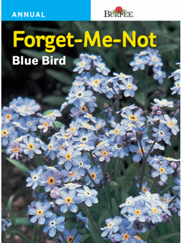 Burpee Forget-Me-Not Blue Bird Seeds Perspective: front