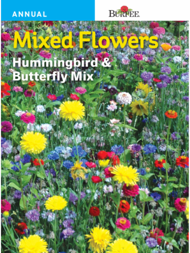 Burpee Hummingbird and Butterfly Wildflower Seeds Perspective: front