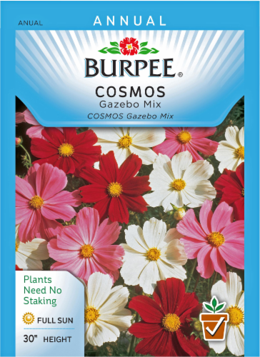 Burpee Gazebo Mix Cosmos Seeds Perspective: front