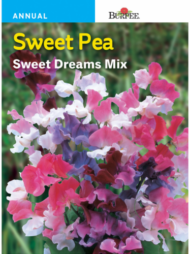 Burpee Sweet Pea Sweet Dreams Seed Mix Perspective: front