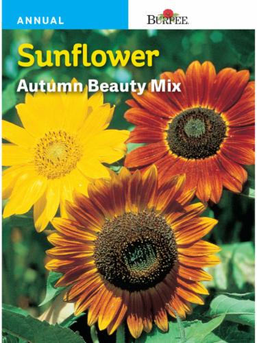 Burpee Autumn Beauty Mix Sunflower Seeds Perspective: front