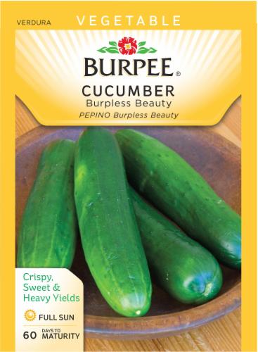 Burpee Burpless Beauty Cucumber Seeds - Green Perspective: front