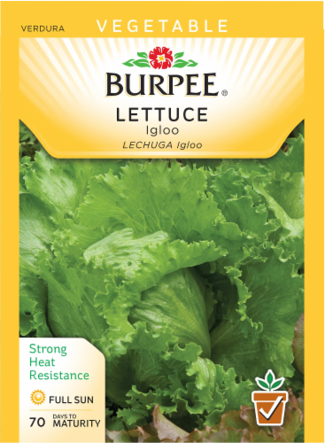 Burpee Igloo Lettuce Seeds Perspective: front