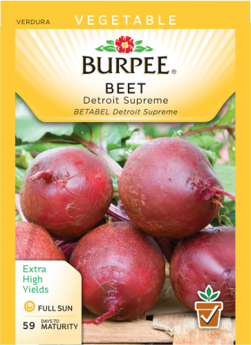 Burpee Detroit Supreme Beet Seeds - Red Perspective: front