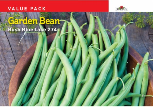 Burpee Garden Bean Bush Blue Lake 274 Value Pack Seeds - Green Perspective: front