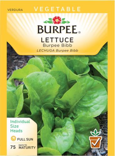 Burpee Bibb Lettuce Seeds - Green Perspective: front