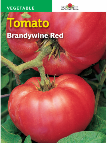 Burpee Brandywine Tomato Seeds - Red Perspective: front