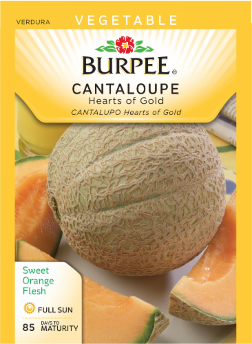 Burpee Vegetable Cantaloupe Hearts of Gold Perspective: front