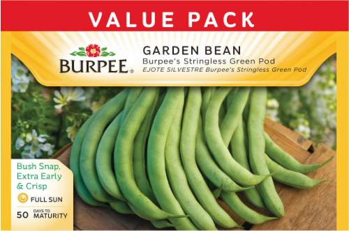 Burpee Stringless Green Pod Bean Seeds Perspective: front