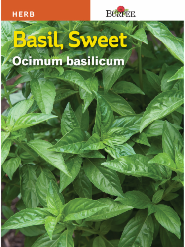 Burpee Sweet Basil Seeds Perspective: front