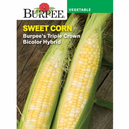Burpee Triple Crown Bicolor Sweet Corn Seeds Perspective: front