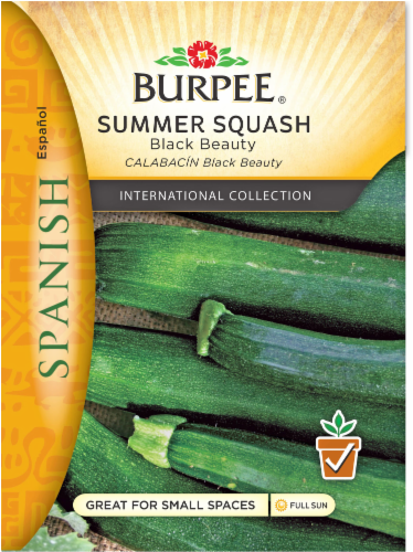 Burpee Black Beauty Squash Seeds - Green Perspective: front