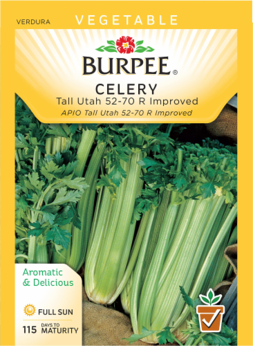 Burpee Tall Utah 52-70R Improved Celery Seeds Perspective: front