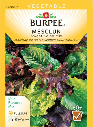 Burpee Mesclun Sweet Salad Mix Perspective: front