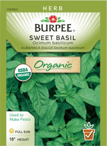 Burpee Organic Sweet Basil Perspective: front