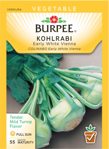 Burpee Early White Vienna Kohlrabi Seeds Perspective: front