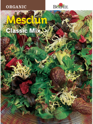 Burpee Classic Mix Mesclun Seeds Perspective: front