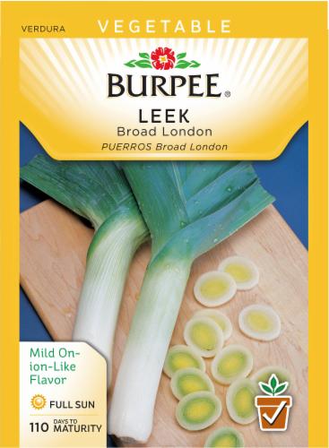 Burpee Broad London Leek Seeds Perspective: front