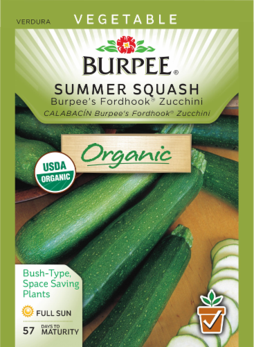 Burpee Fordhook Zucchini Summer Squash Seeds Perspective: front