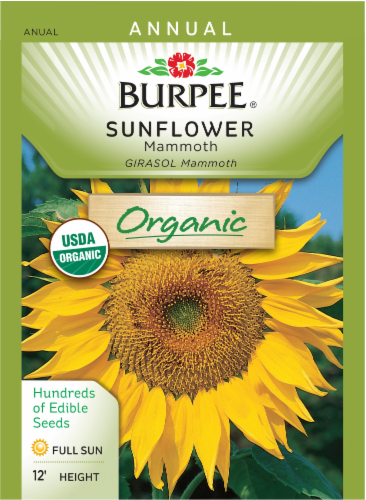 Burpee Mammoth Organic Sunflower Seeds Perspective: front
