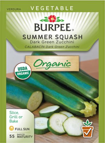 Burpee Organic Dark Green Zucchini Summer Squash Seeds Perspective: front