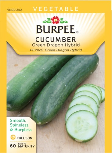 Burpee Green Dragon Hybrid Cucumber Seeds Perspective: front