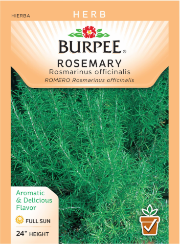 Burpee Rosemary Seeds Perspective: front