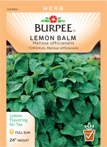 Burpee Lemon Balm Seeds Perspective: front
