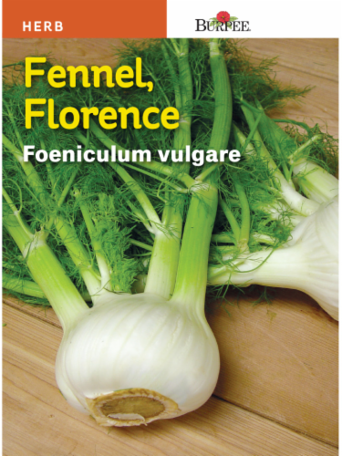 Burpee Florence Fennel Seeds Perspective: front