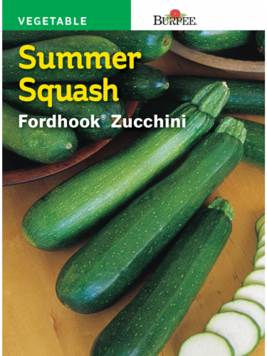 Burpee Fordhook Zucchini Summer Squash Seeds - Green Perspective: front