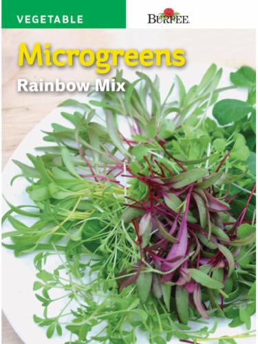 Burpee Rainbow Mix Microgreens Seeds Perspective: front