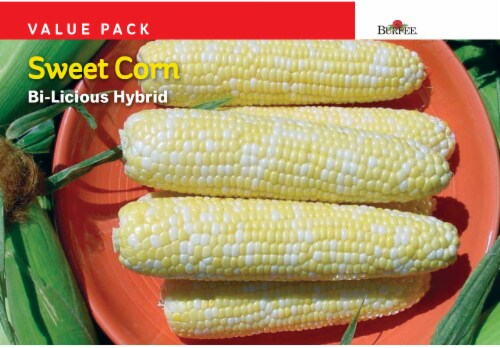 Burpee Bi-Licious Sweet Corn Hybrid Value Pack Seeds - Yellow Perspective: front