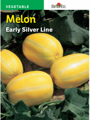 Burpee Early Silver Line Melon Seeds - Yellow Perspective: front